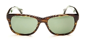Robert Graham Sunglasses-Godfather-Harvard Green/Tortoise Frame